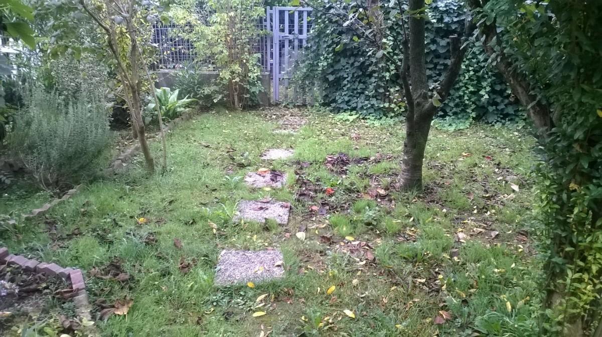 Rifacimento giardino irrigazione aiuola a milano for Preventivo impianto irrigazione