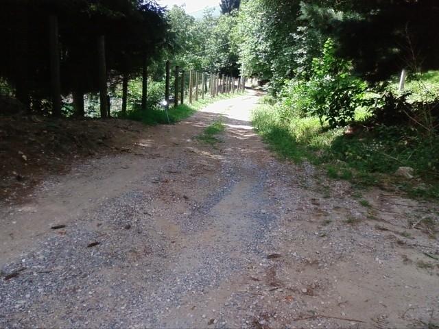 Asfaltare strada privata lunga circa 800 mt a piasco for Strada privata