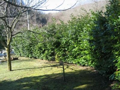 Preventivo manutenzione giardini giardino online - Costo impianto idraulico casa 150 mq ...